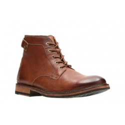 Schott - Blouson Lc8100a - Dark Brown